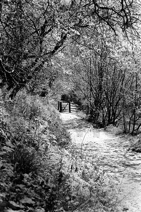 A selection of Black & White images of the valley and surrounding area.